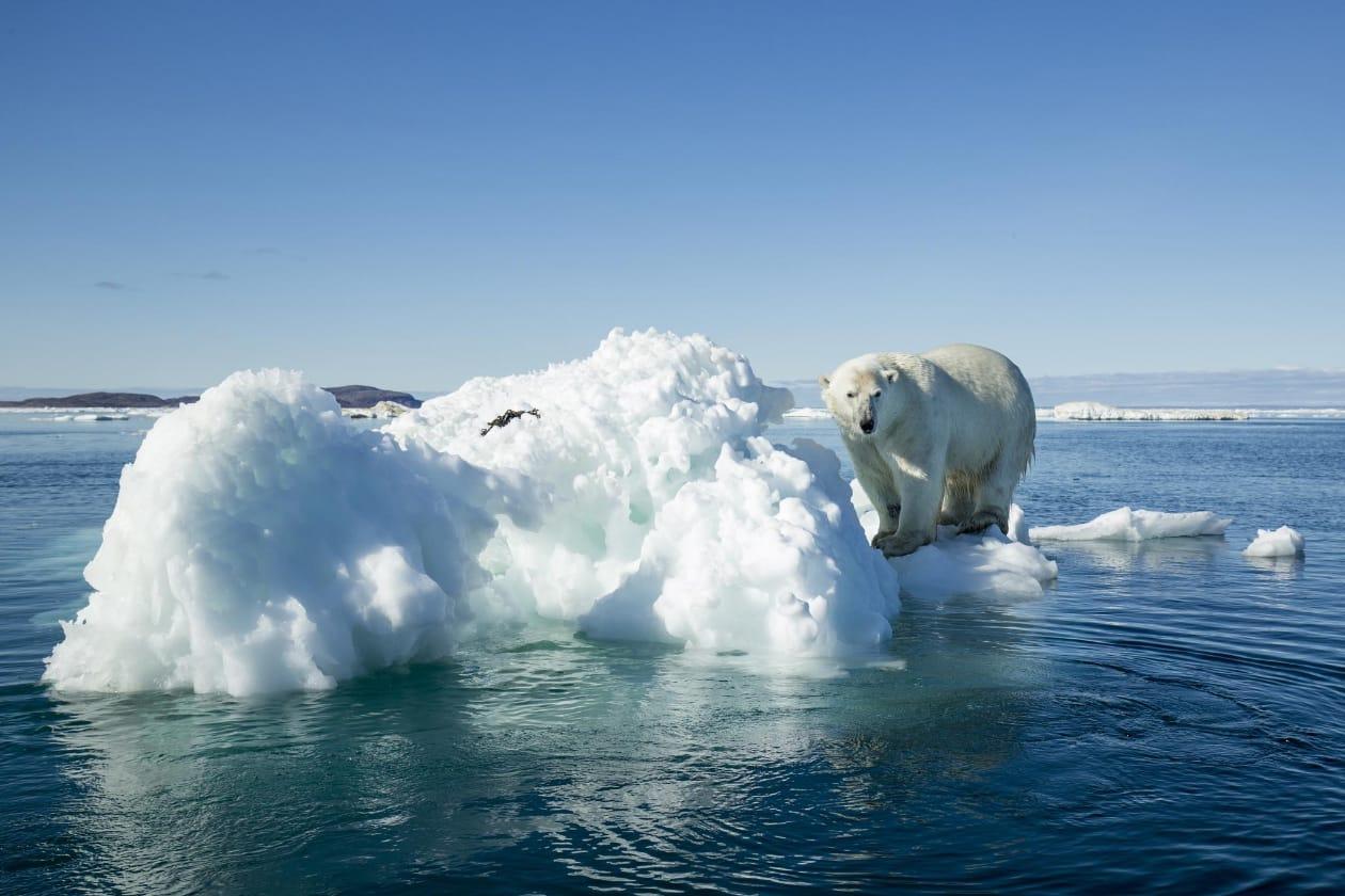地球温暖化とサスティナビリティ