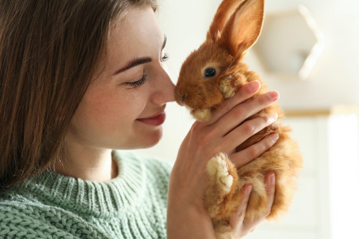 動物実験をしていない化粧品(コスメ)のイメージ
