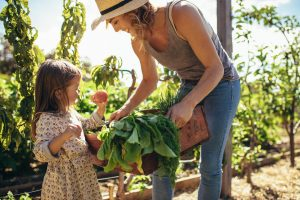 Eco friendly actions: having your own farm/garden