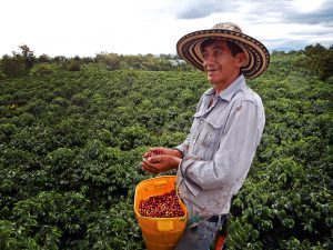 fairtrade coffee farmer