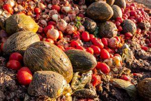 食品廃棄物の現状