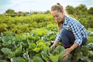 A woman farming organically
