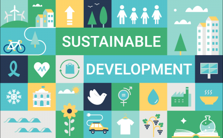 Simple graphic of the Sustainable Development Goals's essence