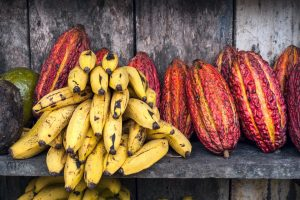 Try out some new fairtrade products during fairtrade month, like bananas.