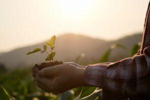 ESG投資とサスティナビリティ