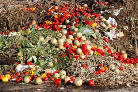 Food waste prevention is needed!
