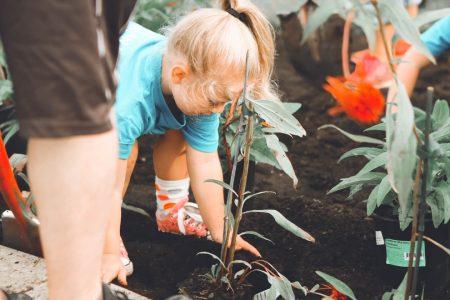 ソーシャルグッドな植林活動をする少女