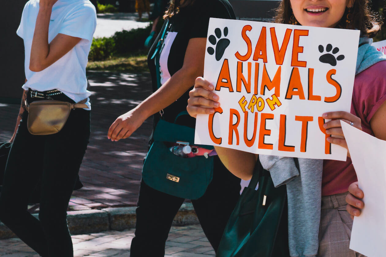 Support Animals: animal rights march