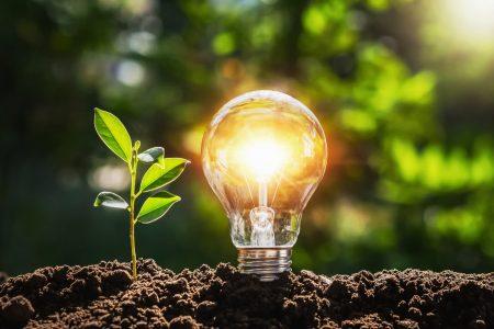 環境に優しいグリーンエネルギー、バイオ燃料