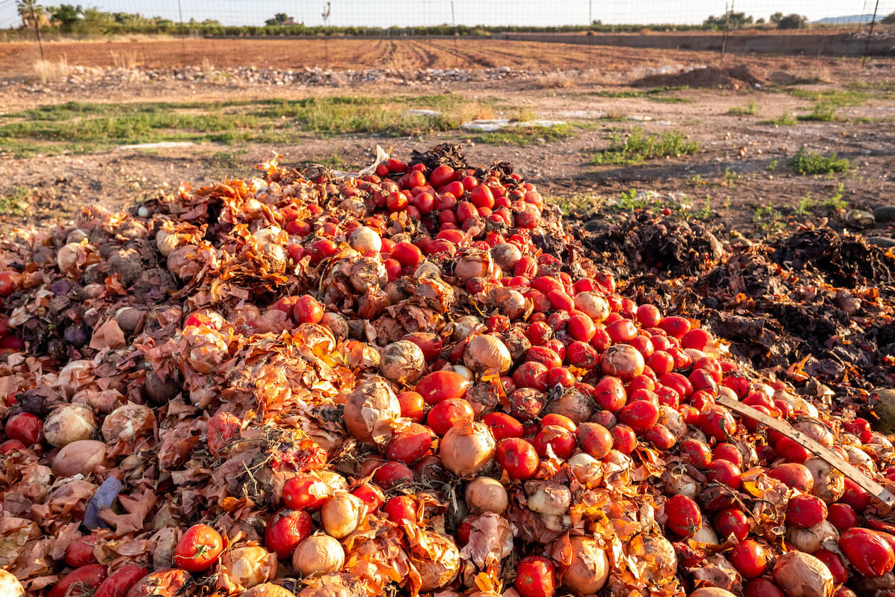 Effects of Food Waste: wasted land
