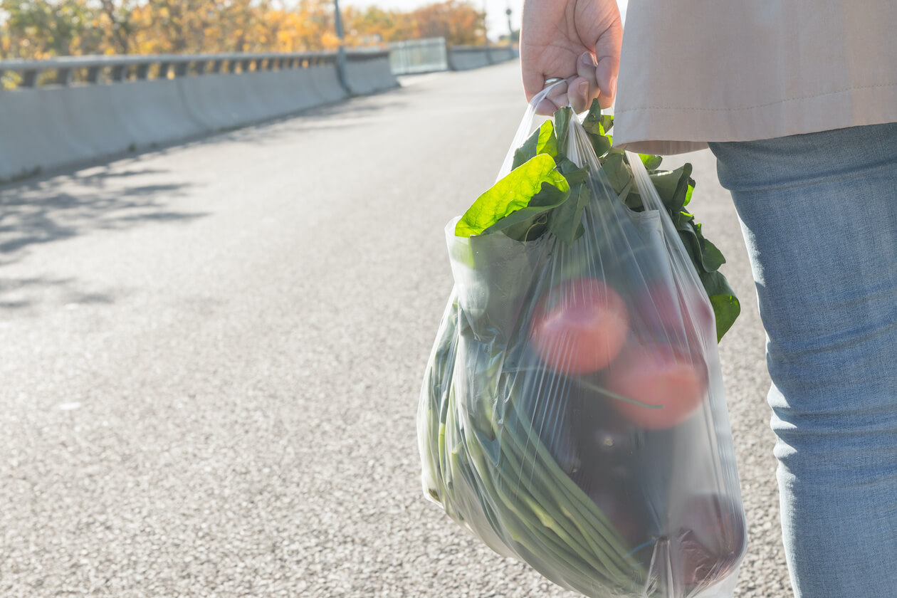 Plastic Bag Pollution Fact: Shopping