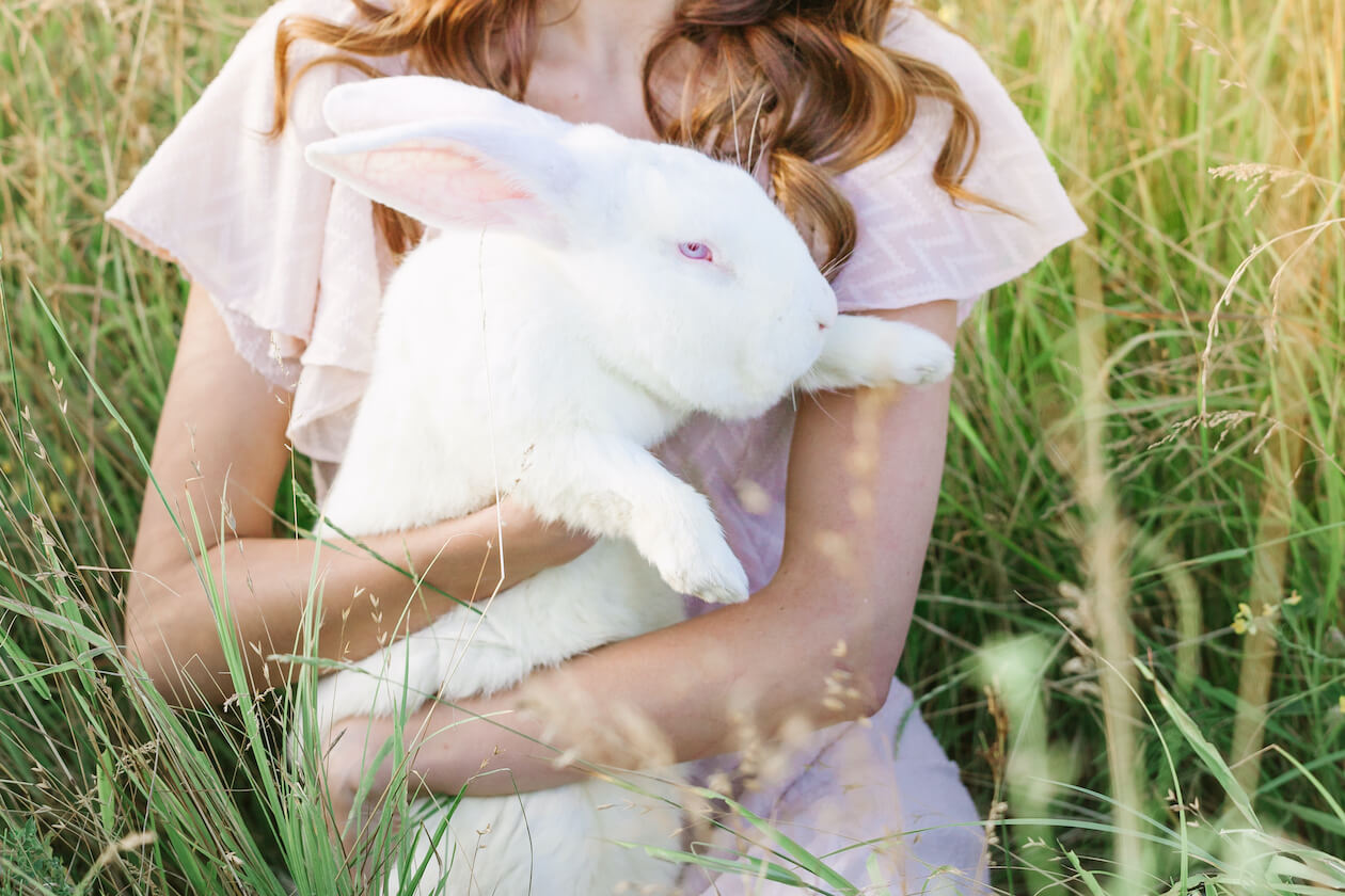 Protect the bunnies with cruelty free products