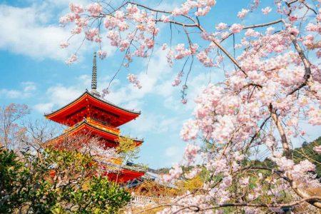 京都議定書|地球温暖化を防止するための、国際社会初の条約とは?