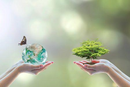 生物多様性条約を守ることは、地球と自然を保護すること