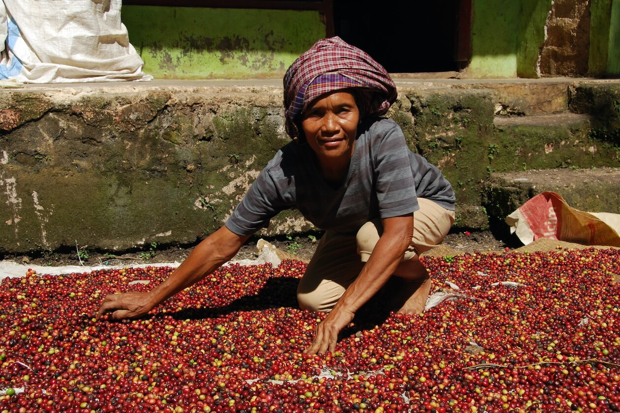 Fair trade benefits are tightly involved with the farmers and producers