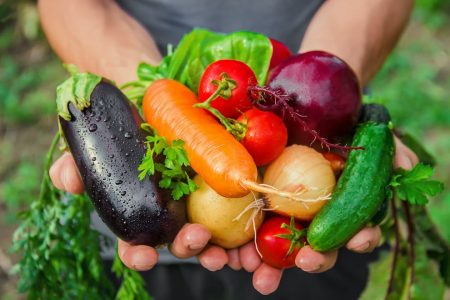 Find out about organic food meaning here