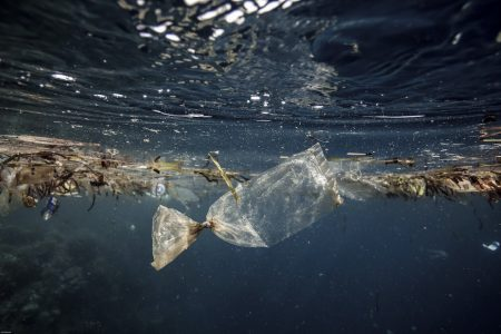 Plastic Pollution definition