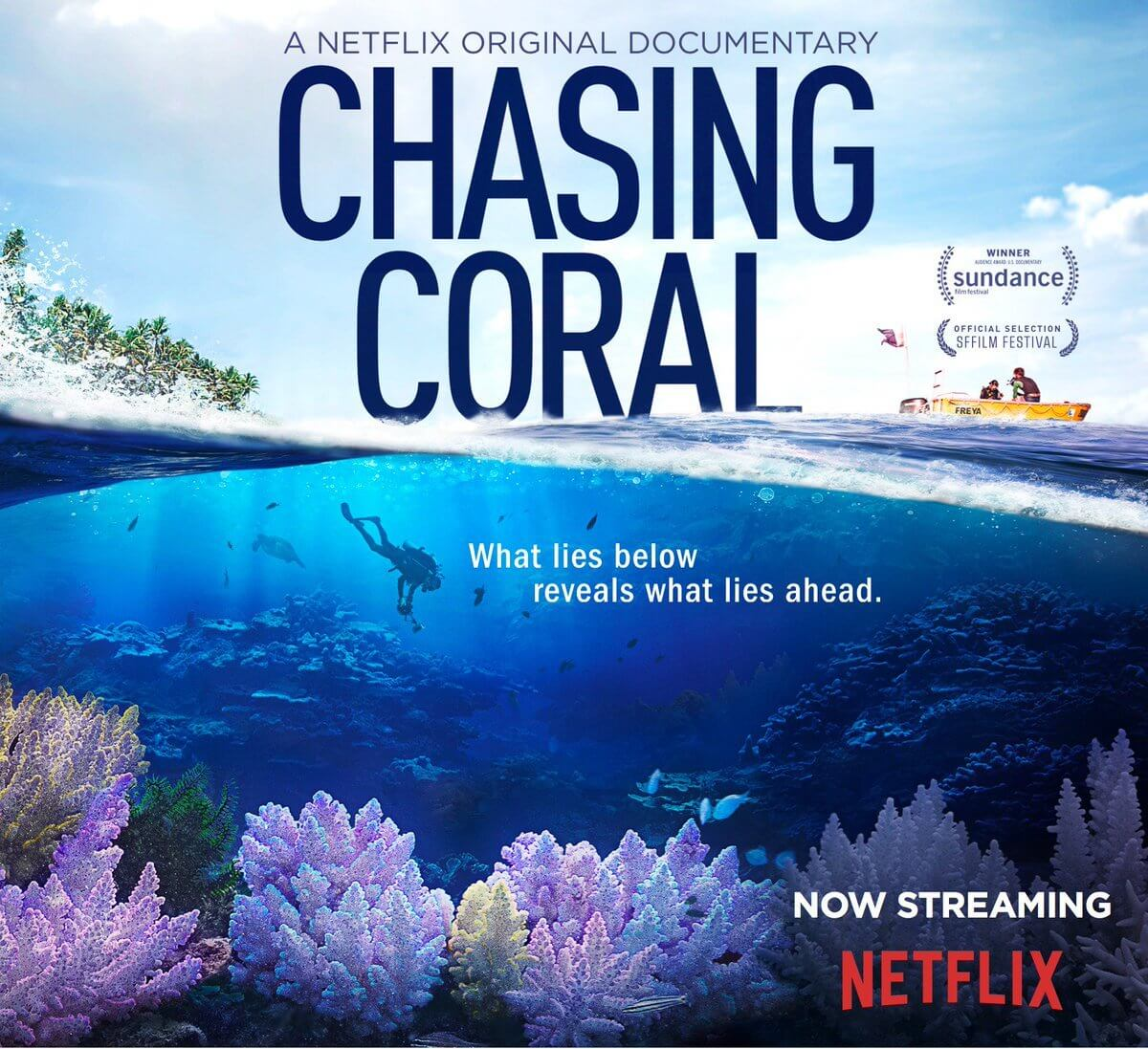 Chasing Coral - earth day movie about corals
