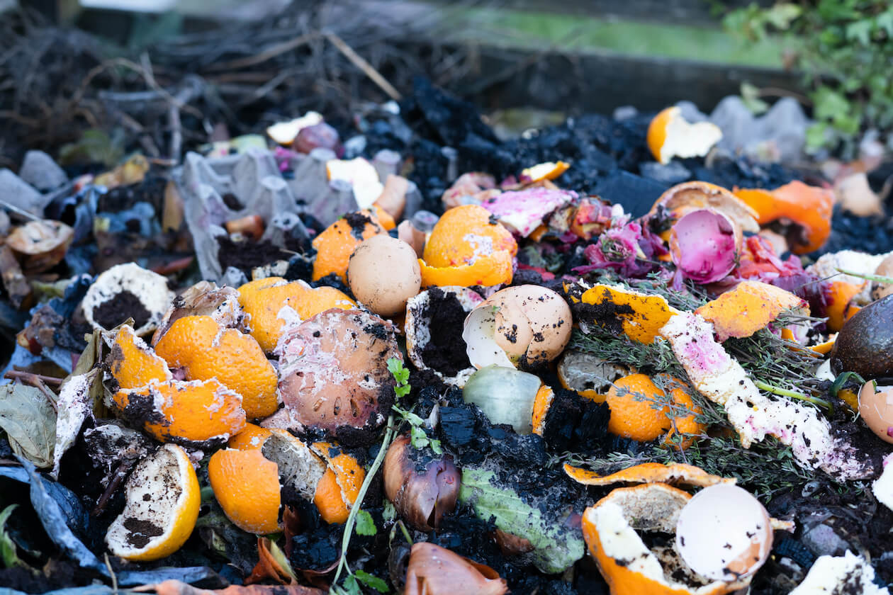 Reduce food waste can help with climate change