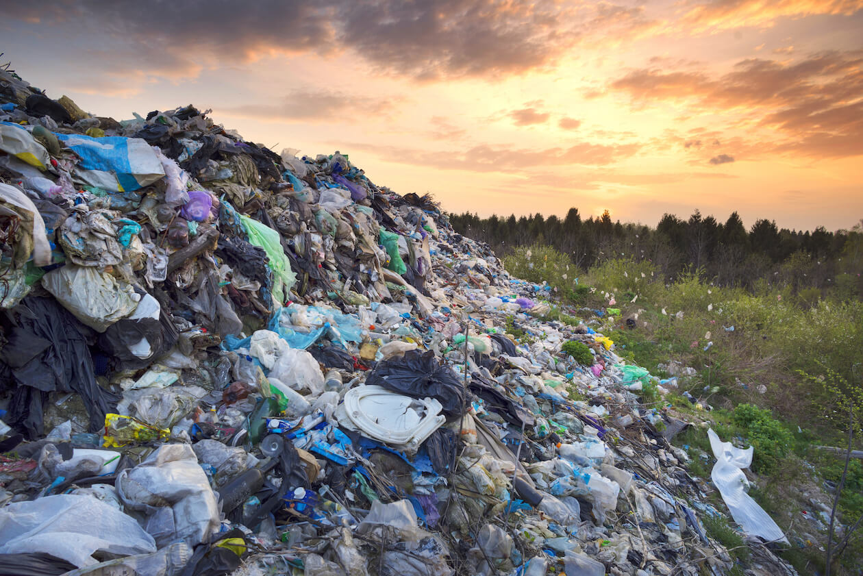 Food waste has significant impact on environment