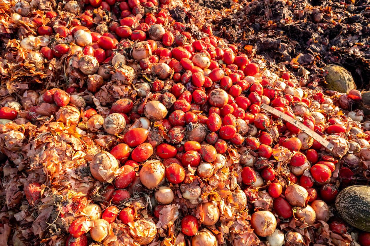 Food waste in landfills