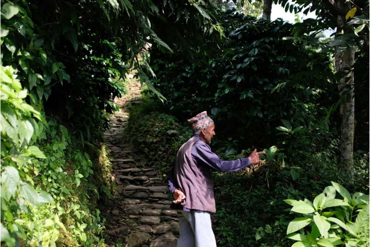 ネパール産のビカスコーヒー