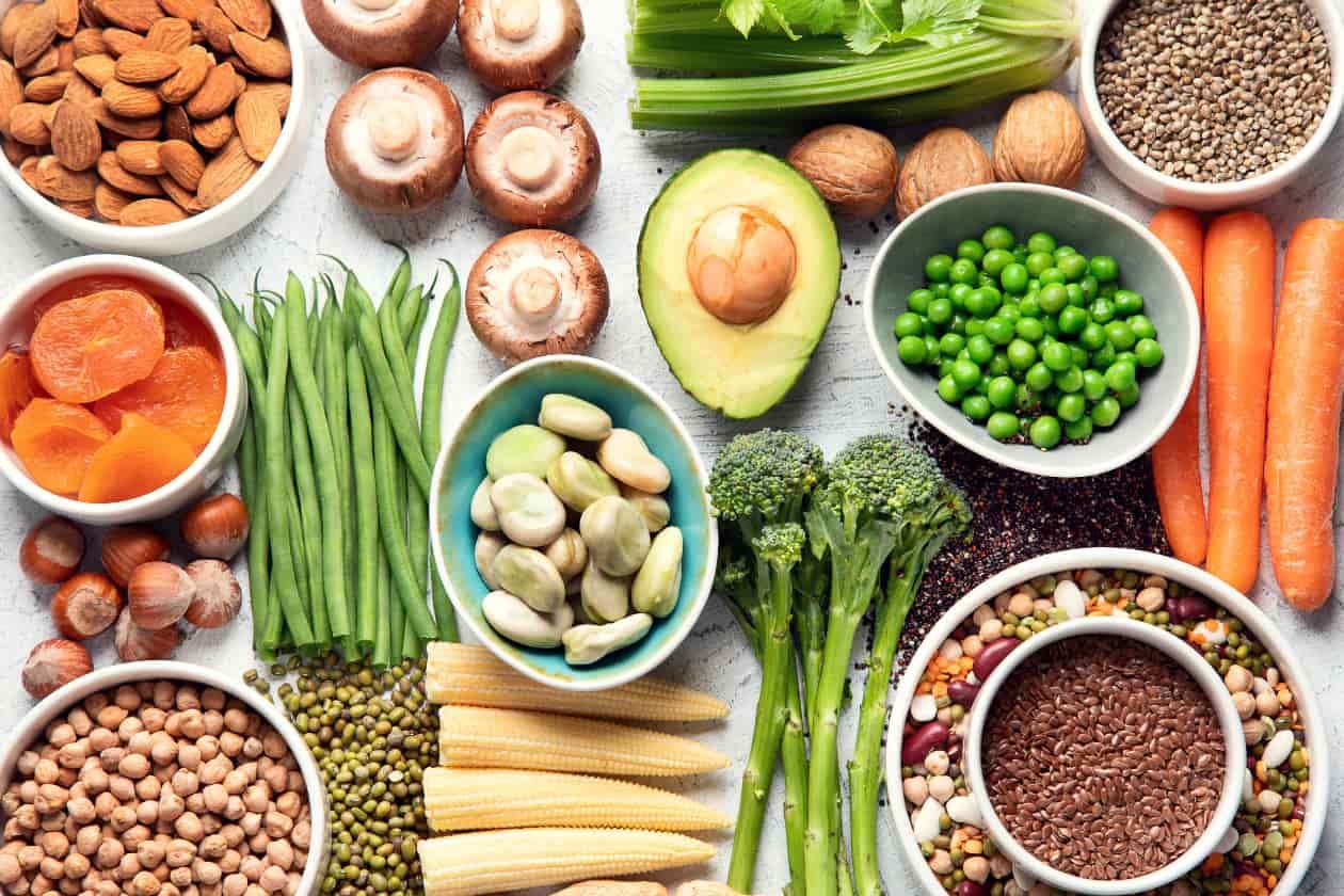 植物性の食材