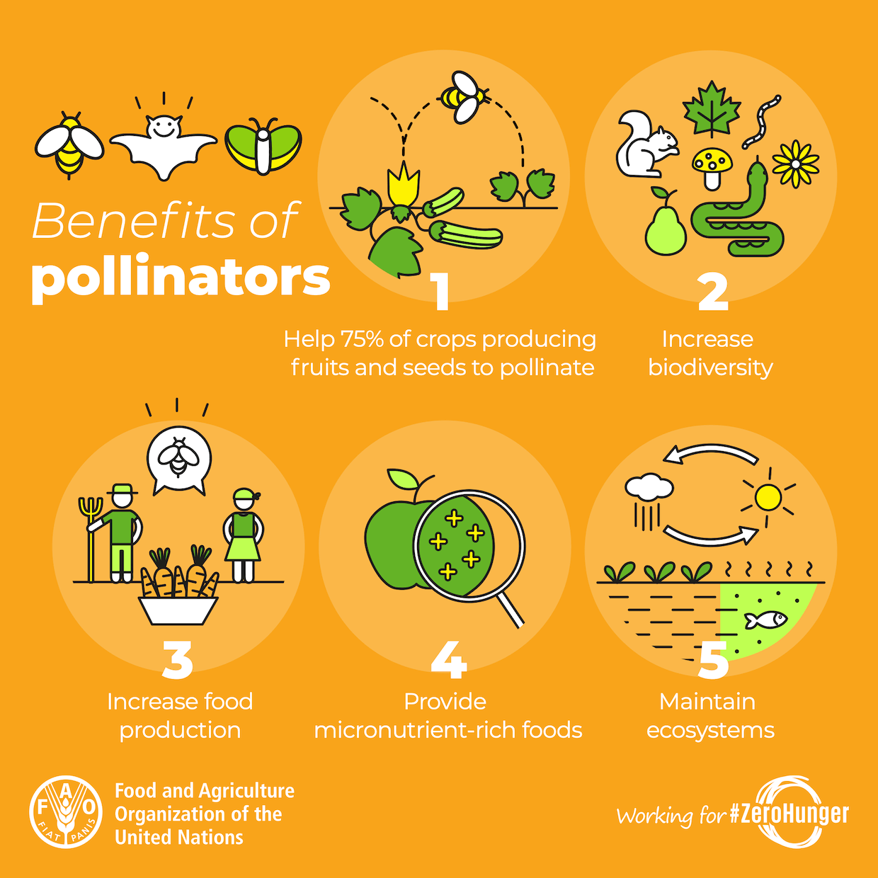 Benefits of pollinators graphic for World Bee Day