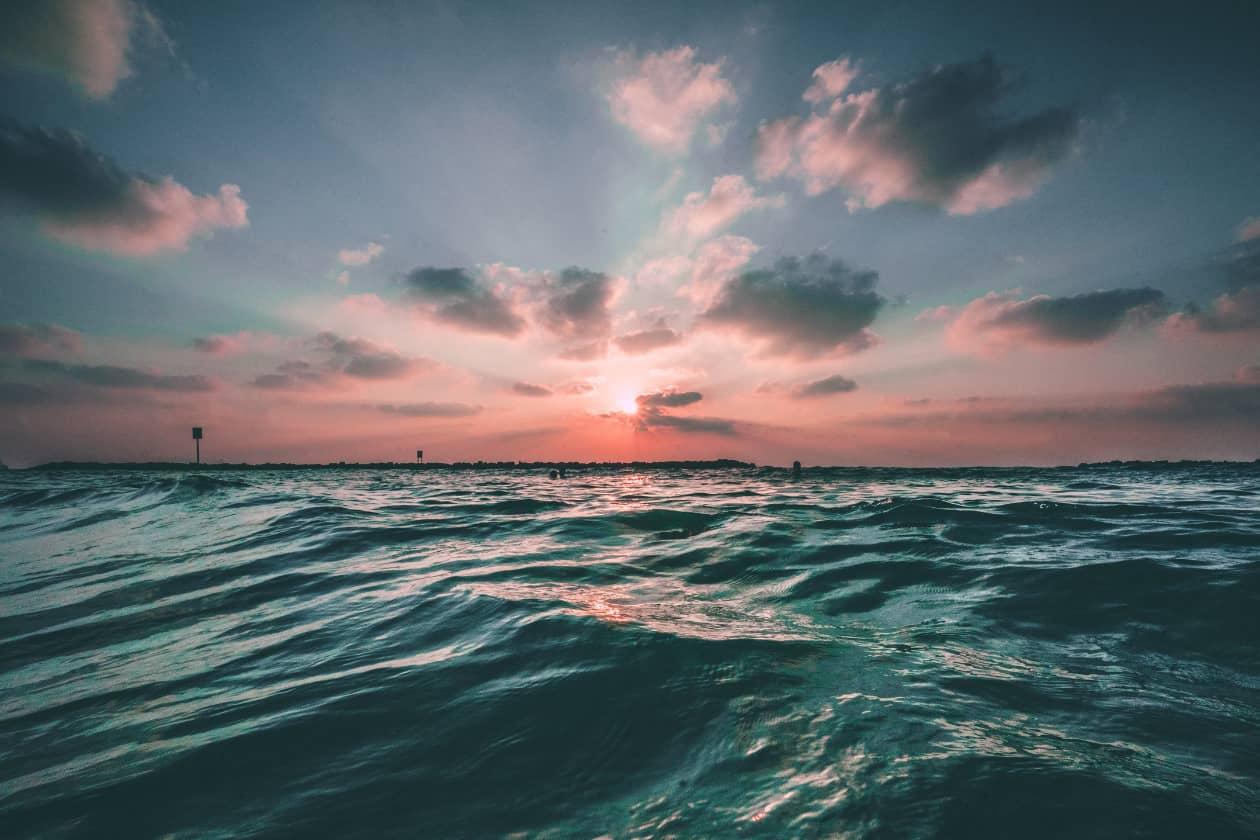 海洋保護のための企業活動