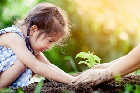 World Environment Day is about restoration