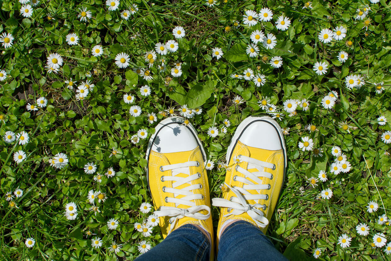 sneakers with daisy
