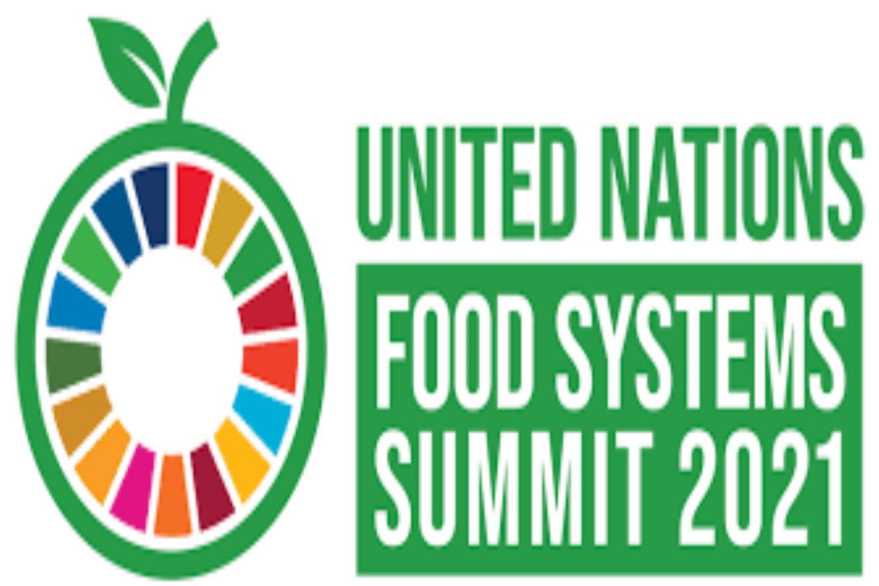 International Youth Day Food System Summit 2021