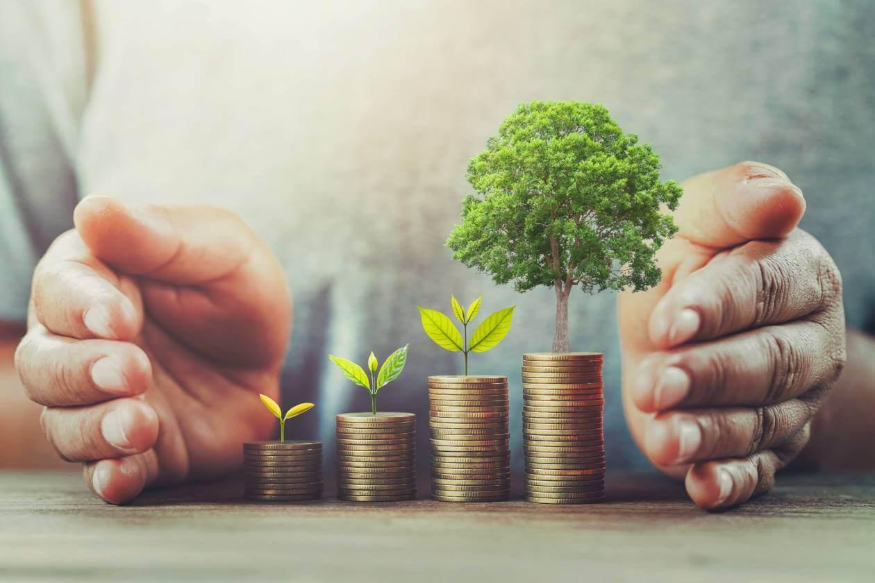 wallet friendly eco saving
