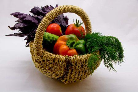 PLANTIO(プランティオ)|みんなで野菜を育てる新しい農業の形