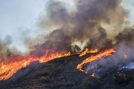 Wildfires happening around the world
