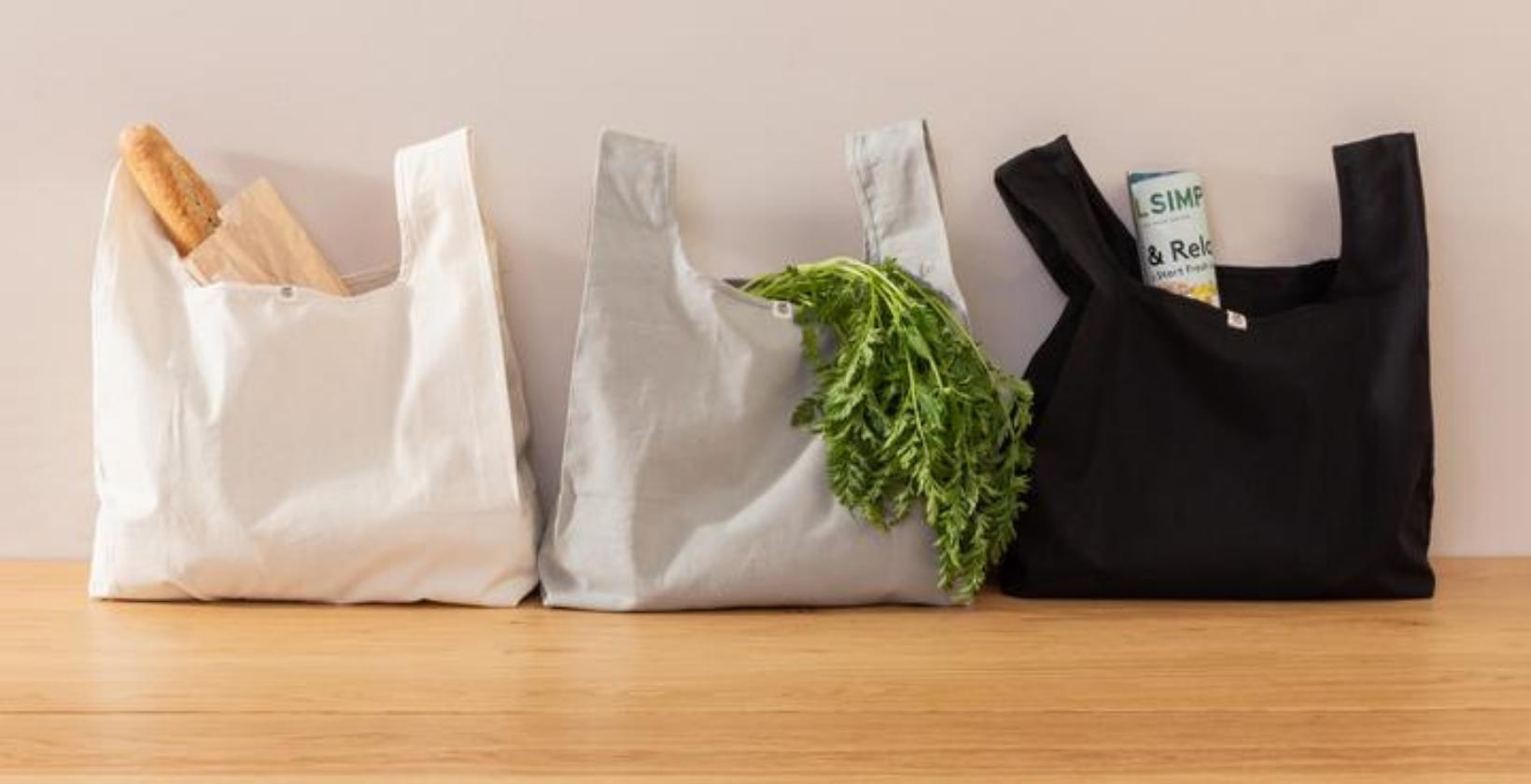 planet e zero waste bag